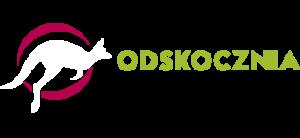 Park Trampolin w Opolu - ODSKOCZNIA - Opole